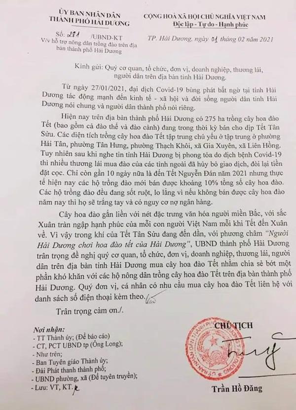 Hải Dương kêu gọi người mua đào Tết hỗ trợ nông dân bị ảnh hưởng bởi dịch Covid-19-2