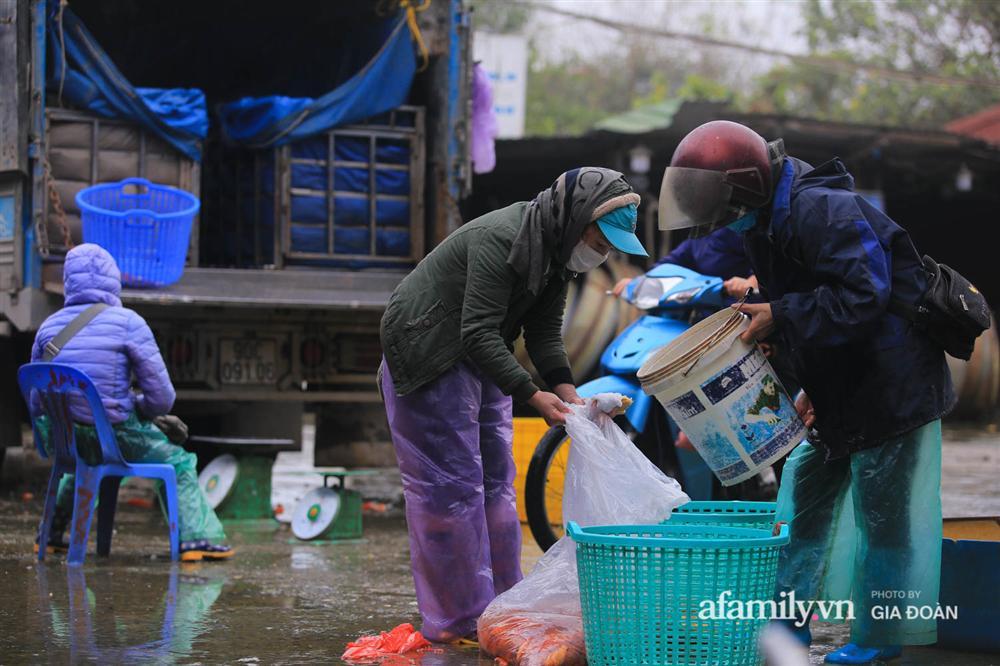 Chợ cá lớn nhất Hà Nội nhộn nhịp trước lễ ông Công ông Táo, dân buôn bở hơi tai vác cả tấn cá mỗi ngày nhưng không rời chiếc khẩu trang-17