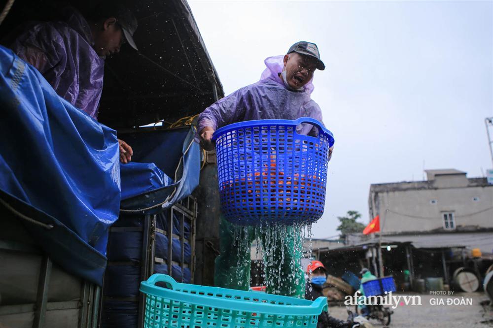 Chợ cá lớn nhất Hà Nội nhộn nhịp trước lễ ông Công ông Táo, dân buôn bở hơi tai vác cả tấn cá mỗi ngày nhưng không rời chiếc khẩu trang-3