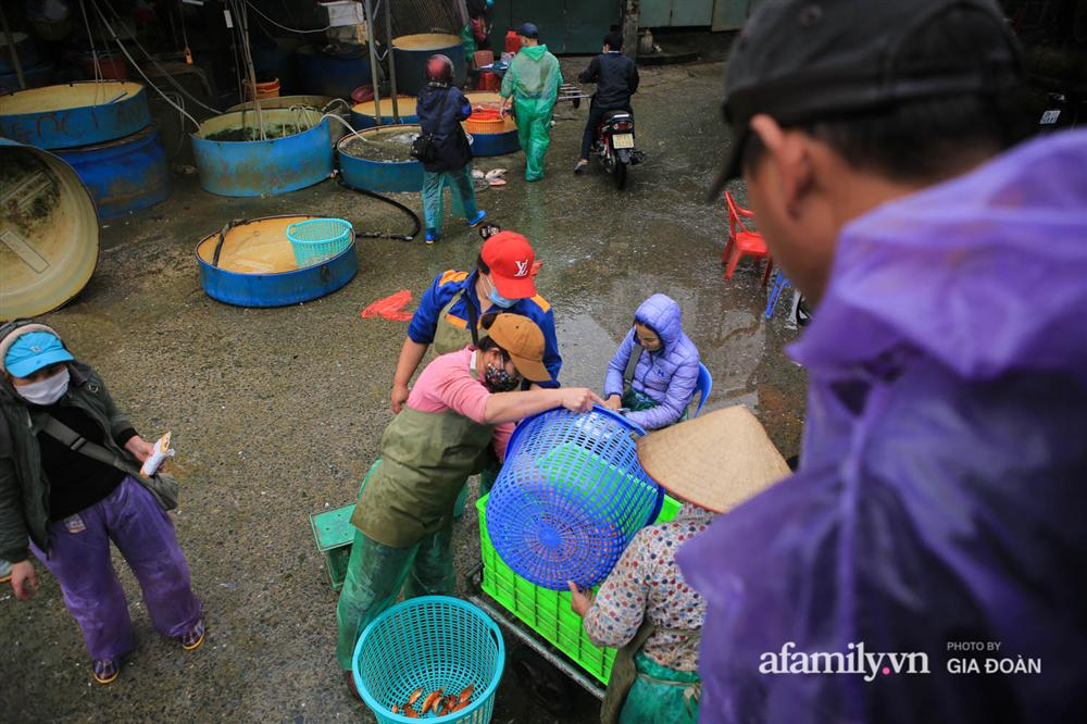 Chợ cá lớn nhất Hà Nội nhộn nhịp trước lễ ông Công ông Táo, dân buôn bở hơi tai vác cả tấn cá mỗi ngày nhưng không rời chiếc khẩu trang-4