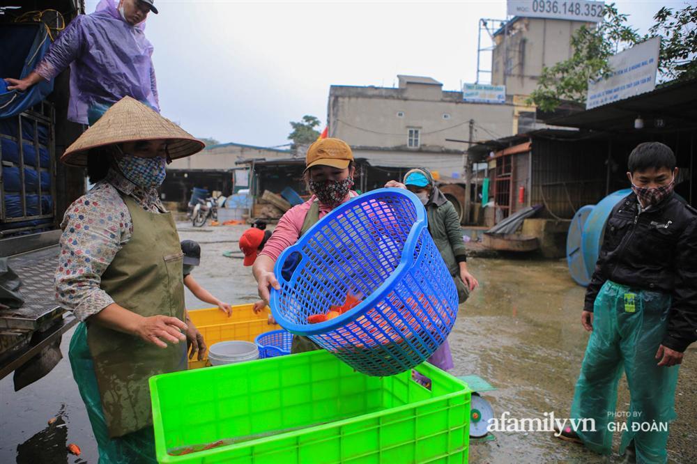 Chợ cá lớn nhất Hà Nội nhộn nhịp trước lễ ông Công ông Táo, dân buôn bở hơi tai vác cả tấn cá mỗi ngày nhưng không rời chiếc khẩu trang-5