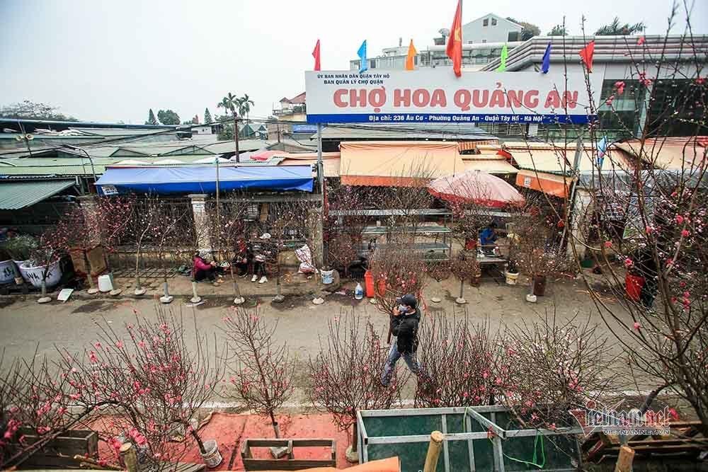 Tai họa ngày cận Tết, cả làng hoa Hà Nội ngồi trên đống lửa-11