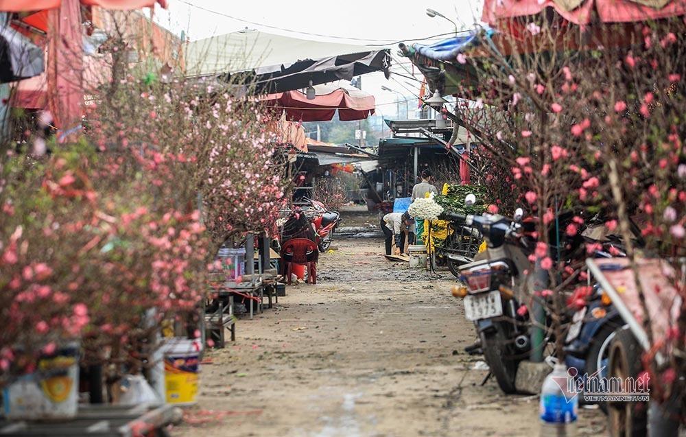Tai họa ngày cận Tết, cả làng hoa Hà Nội ngồi trên đống lửa-12