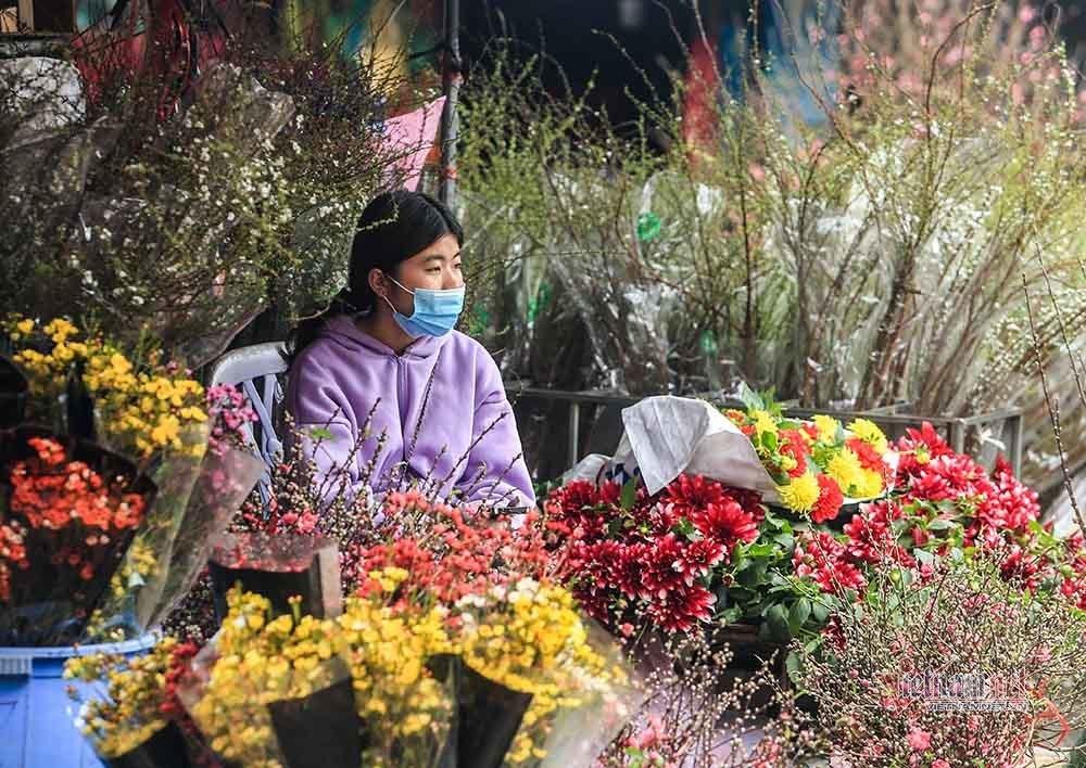 Tai họa ngày cận Tết, cả làng hoa Hà Nội ngồi trên đống lửa-15