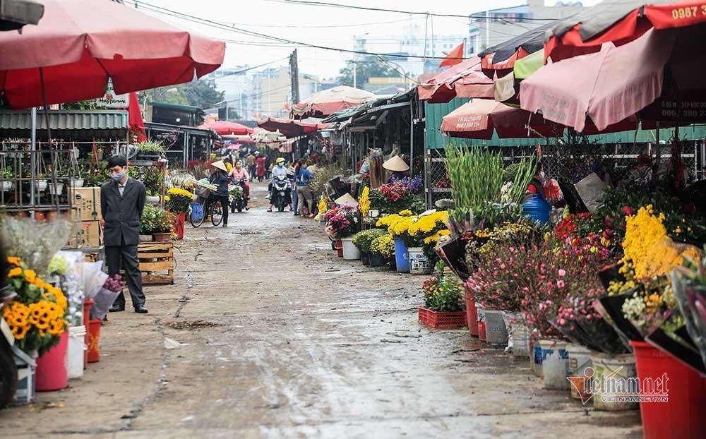 Tai họa ngày cận Tết, cả làng hoa Hà Nội ngồi trên đống lửa-16