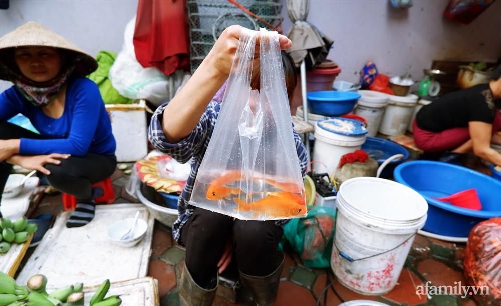 Thị trường đồ lễ ông Công ông Táo sôi động, đồ cúng hàng mã giữ nguyên giá nhưng thực phẩm, hoa quả tăng giá 30%-8
