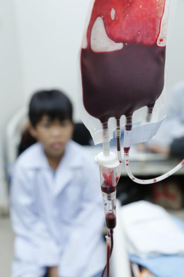 Khẩn: Thiếu 13.000 đơn vị máu dịp Tết, Viện Huyết học kêu gọi cộng đồng hiến máu và tiểu cầu-4