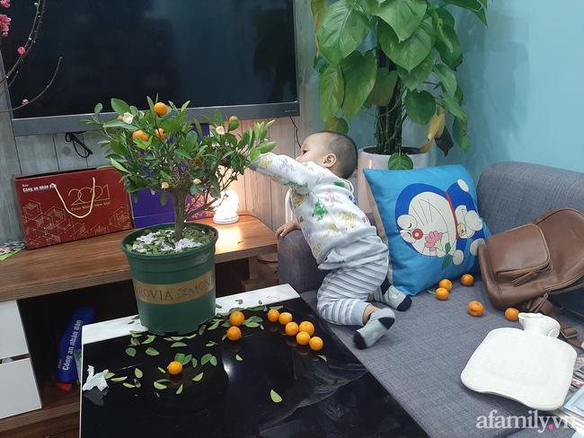 Đầu tư cây quất xinh xinh chơi Tết chưa nổi 1 ngày, ông bố xót ruột nhìn con trai say sưa chơi trò hái quả mùa Xuân-2