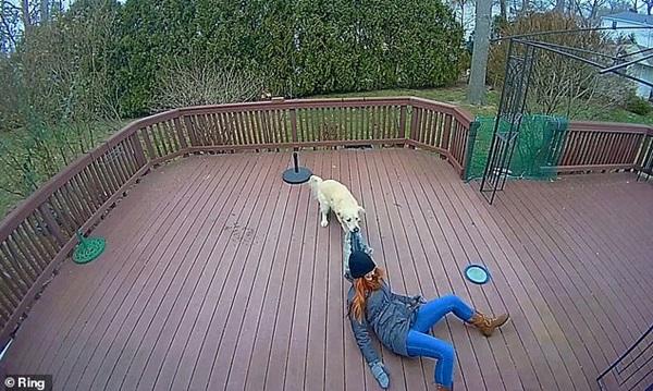 Chú chó giằng co áo kéo lê làm ngạt thở cô gái, ngỡ tai nạn đẫm máu kinh hoàng nhưng sự thật không như mọi người nghĩ-3