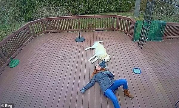 Chú chó giằng co áo kéo lê làm ngạt thở cô gái, ngỡ tai nạn đẫm máu kinh hoàng nhưng sự thật không như mọi người nghĩ-4