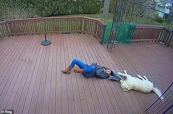 Chú chó giằng co áo kéo lê làm ngạt thở cô gái, ngỡ tai nạn đẫm máu kinh hoàng nhưng sự thật không như mọi người nghĩ-5
