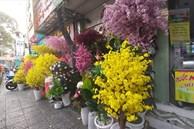 Chơi hoa giả ngày Tết nên bày trí như thế nào cho hợp phong thủy?
