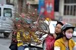 Gió mùa Đông Bắc tràn về từ 27 Tết trời chuyển mưa rét, Hà Nội thấp nhất 13 độ C-2