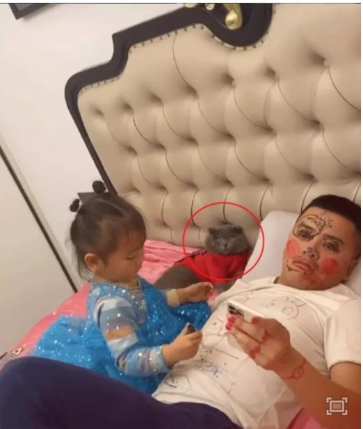 Bố bất lực để con gái vẽ đầy lên người, nhưng phản ứng của nhân vật này mới là chi tiết khiến người xem phải ôm bụng cười-1