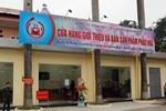 Tạo hình hoa Tết 2021 ở Quảng Nam bị chế giễu nhạy cảm đã được chỉnh sửa-6
