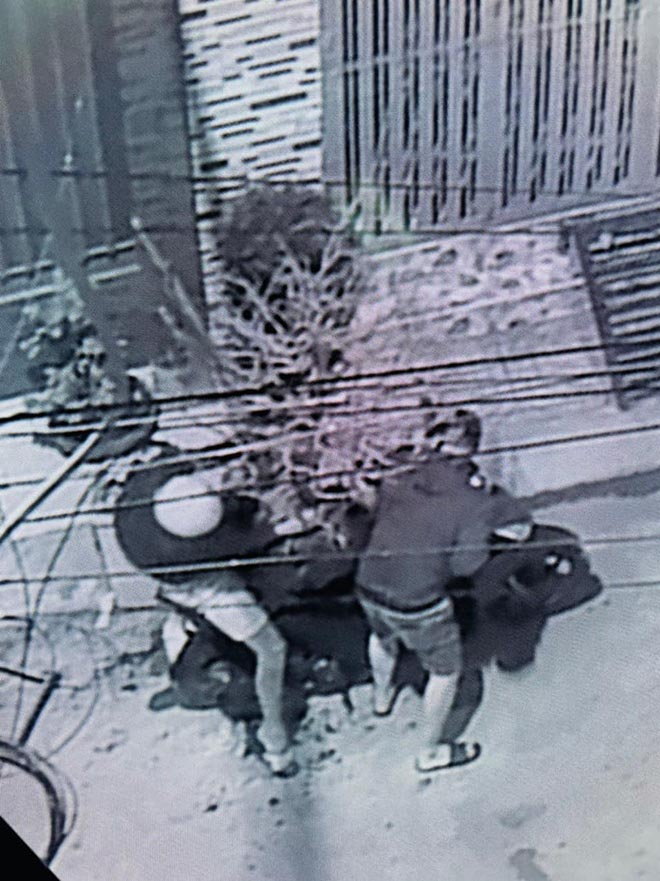 Hải Băng, Thành Đạt bức xúc vì bị trộm cây mai 50 triệu đồng-4