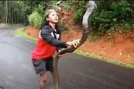 Video: Tròn mắt xem cô gái tay không tóm gọn rắn hổ mang chúa