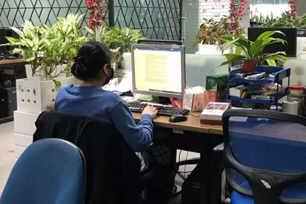 Văn phòng công sở ngày làm việc cuối cùng năm Canh Tý: Nơi vẫn sáng đèn lạch cạnh tiếng gõ phím, chốn lại thưa thớt vì nhân viên về quê