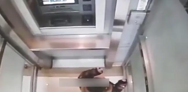 Cậu bé 5 tuổi một mình đi vào cây ATM, hành động sau đó khiến nhân viên ngân hàng kinh ngạc: Đứa trẻ này quá thông minh!-2