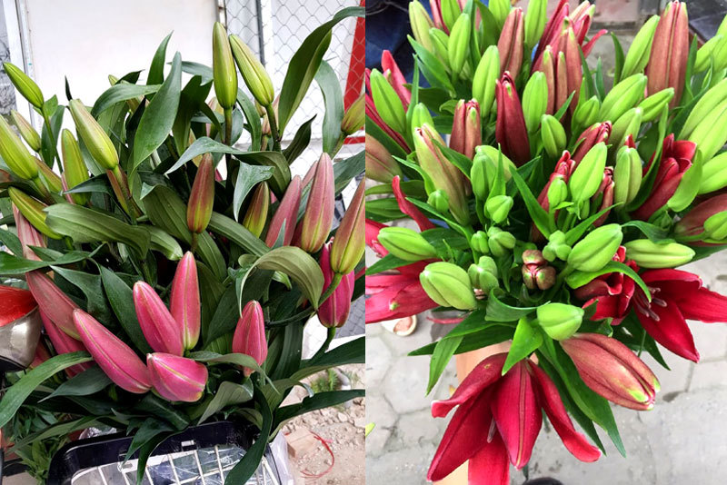 Hoa tươi giá rẻ như rau, chị em rủ nhau 'giải cứu' cho dân làng-3