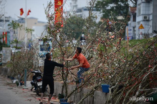 Hoa lê rừng xuống phố ngày đầu năm mới khiến người Hà Nội mê mẩn-4
