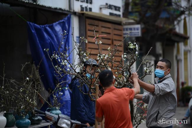 Hoa lê rừng xuống phố ngày đầu năm mới khiến người Hà Nội mê mẩn-9