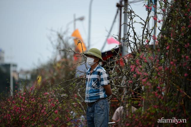Hoa lê rừng xuống phố ngày đầu năm mới khiến người Hà Nội mê mẩn-13