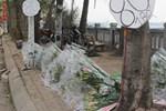 Hoa ly hàng xịn giảm giá sập sàn rẻ như rau, 7.000 đồng/cành sau Tết-6