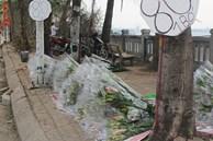 Hà Nội: Hoa tươi 'đổ đống' đầy vỉa hè, nhà vườn bất lực nhìn giá 'lao dốc'