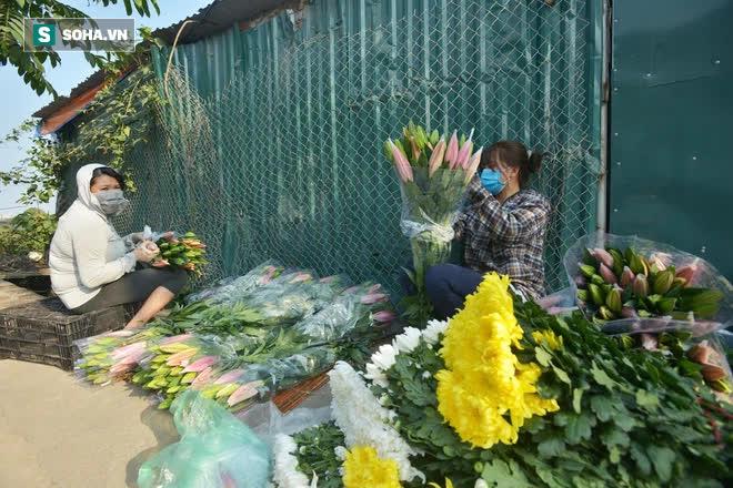 Hoa ly hàng xịn giảm giá sập sàn rẻ như rau, 7.000 đồng/cành sau Tết-4