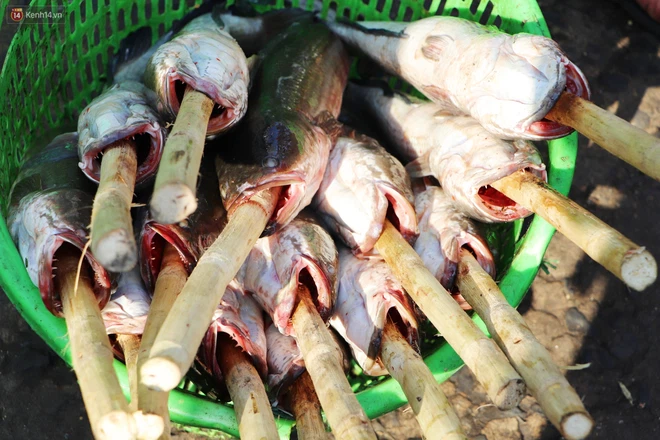 Phố cá lóc nướng đông nghẹt ngày vía Thần tài, nhiều gia đình hốt bạc khi bán sạch 2.000 con trong một buổi sáng-5