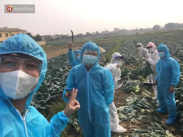 Chuyện người Hà Nội giải cứu hàng chục tấn nông sản: Hàng bán được, bà con Hải Dương mừng lắm-1