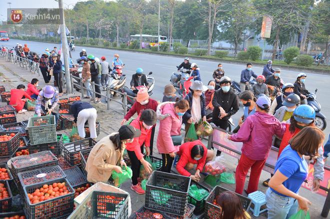 Chuyện người Hà Nội giải cứu hàng chục tấn nông sản: Hàng bán được, bà con Hải Dương mừng lắm-6