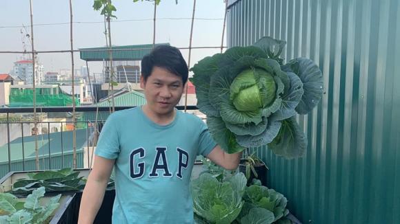 Ca sĩ Trọng Tấn và con gái thu hoạch rau trồng trên tầng thượng-2