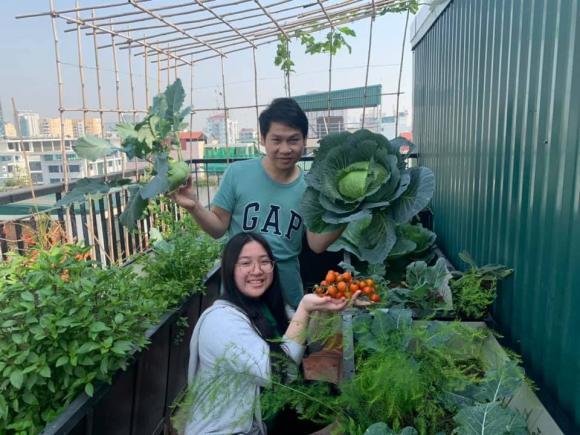 Ca sĩ Trọng Tấn và con gái thu hoạch rau trồng trên tầng thượng-6
