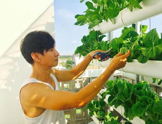 Khu vườn rộng lớn có cả loại ớt nửa tỉ đồng/1kg của Lý Hải - Minh Hà-12