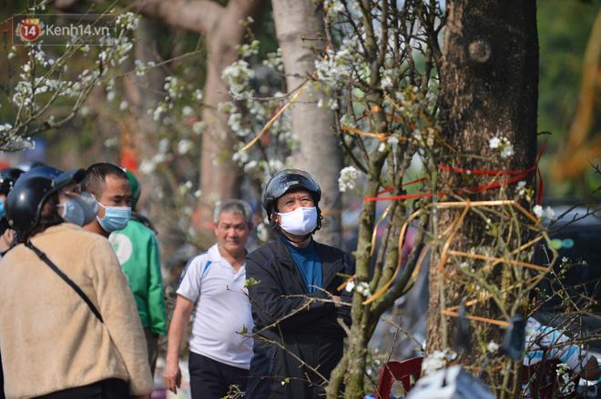 Ảnh: Hàng trăm người dân Hà Nội đổ xô đi mua hoa lê về chơi Rằm tháng Giêng-10