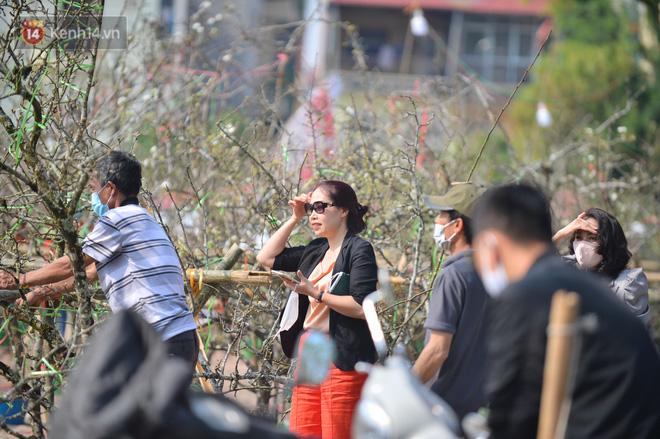 Ảnh: Hàng trăm người dân Hà Nội đổ xô đi mua hoa lê về chơi Rằm tháng Giêng-11