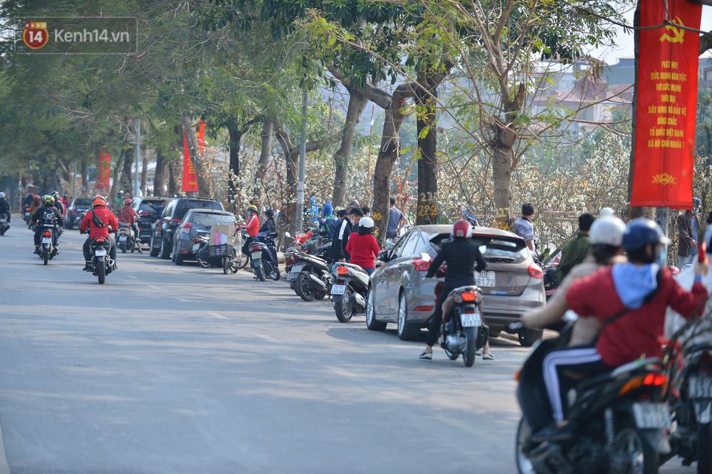 Ảnh: Hàng trăm người dân Hà Nội đổ xô đi mua hoa lê về chơi Rằm tháng Giêng-4
