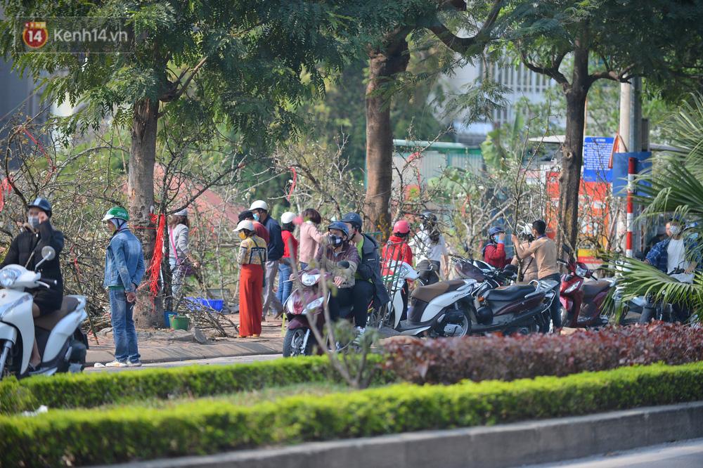 Ảnh: Hàng trăm người dân Hà Nội đổ xô đi mua hoa lê về chơi Rằm tháng Giêng-5