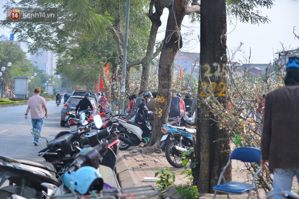 Ảnh: Hàng trăm người dân Hà Nội đổ xô đi mua hoa lê về chơi Rằm tháng Giêng-6