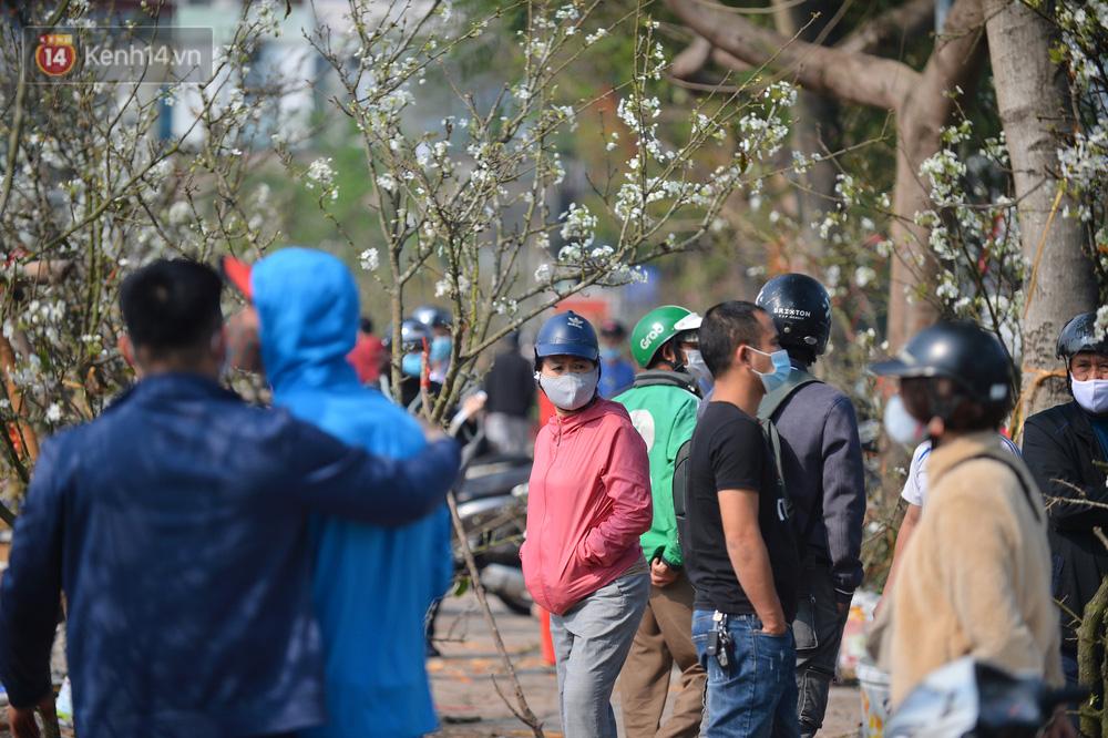 Ảnh: Hàng trăm người dân Hà Nội đổ xô đi mua hoa lê về chơi Rằm tháng Giêng-8