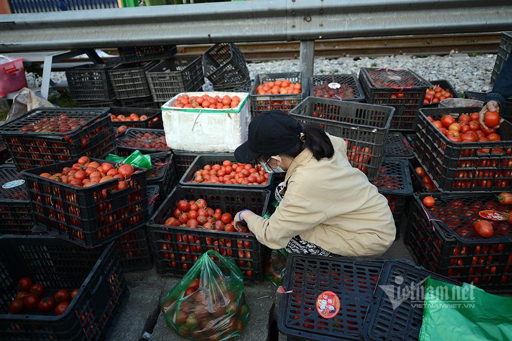 Lo dân bị ép giá, Hải Dương công bố giá nông sản giải cứu-1