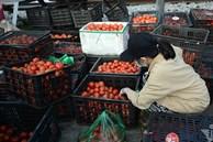 Lo dân bị ép giá, Hải Dương công bố giá nông sản giải cứu