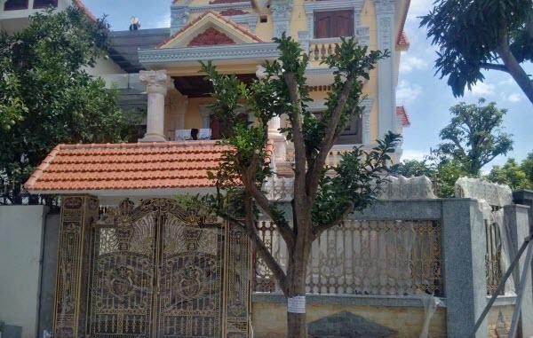 5 loại cây được các đại gia, người giàu chọn để trồng trước cửa nhà và tại sao họ có lựa chọn như vậy?-4