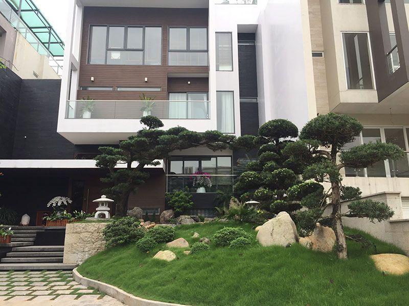 5 loại cây được các đại gia, người giàu chọn để trồng trước cửa nhà và tại sao họ có lựa chọn như vậy?-5