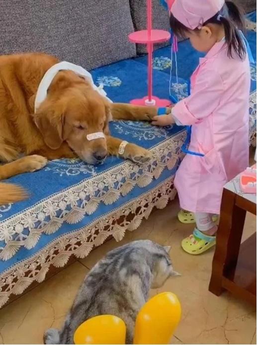 """Bé gái đóng vai bác sĩ, nhìn vẻ mặt cam chịu số phận"""" của các bệnh nhân mà người xem cười rụng răng""""-1"""