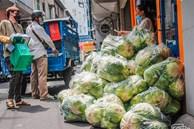 Người Sài Gòn giải cứu súp lơ, bắp cải giúp nông dân mùa dịch: 'Được từng nào, hay từng đó'
