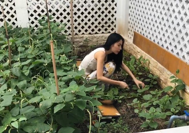 Khám phá khu vườn rộng 100m2 trong biệt thự của Thủy Tiên - Công Vinh-1