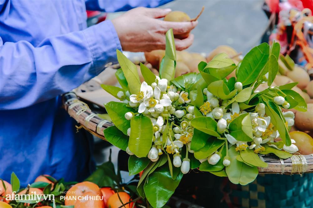 Hàng bưởi Diễn da vàng óng có từng búi hoa tươi giá tận 100k/quả, bà chủ thu cả chục triệu mỗi ngày!-16